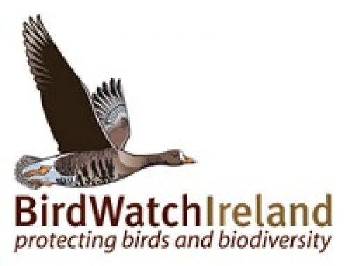 Birdwatch Ireland – Tolka